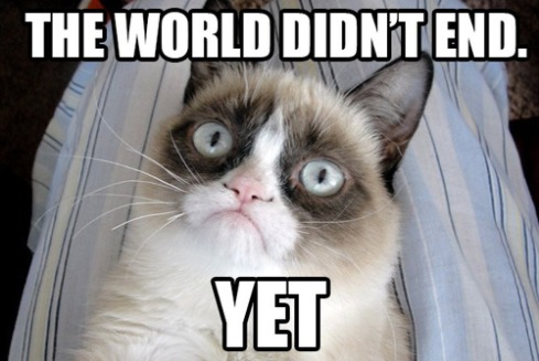 grumpy-cat-has-not-given-up-the-hope-funny-pic