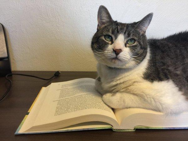 Tweak on a book