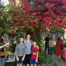 More beautiful tree blossoms, plus me and the kids