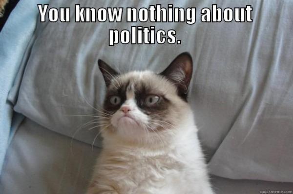 poli sci cat