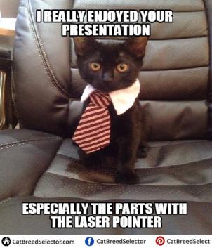 presentation laser point