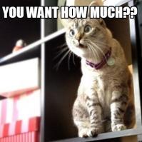cat for sale meme