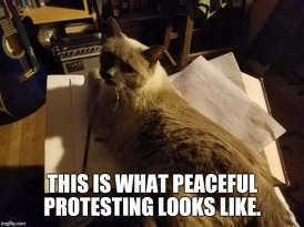peacefulprotest
