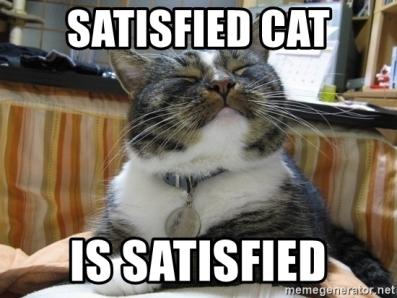 satisfied-cat-is-satisfied