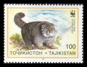 Tajikistan stamp cat