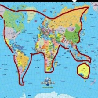 world is a cat