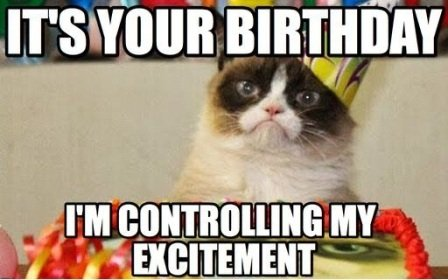 exictement-cat-birthday-meme