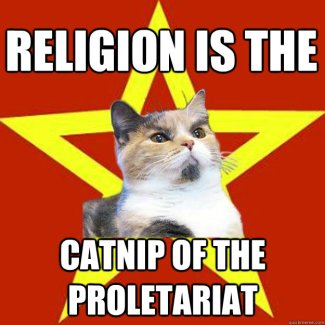 Religion-is-the-catnip